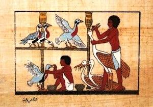 Wall relief from Saqqara, the Tomb of Mereruka
