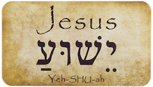 Many believe Yeshua is the incarnation of YHWH