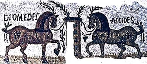 A Roman mosaic of two famous race horses called Diomedes and Aicides. Notice they are surrounded by the palm leaves of victory.