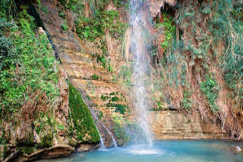 David's Waterfall in the oasis of Ein Gedi in Israel where King David (c. 1000 BC) hid from Saul—(I Samuel 24:1,2)