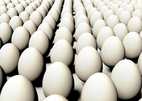 144-eggs